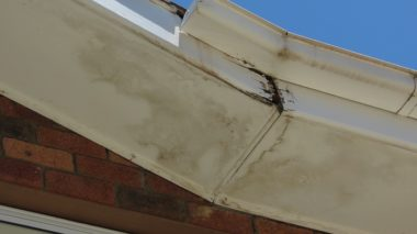 Replace or Repair Your Damaged Eaves and Fascia Boards This Fall