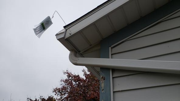 How To Get Woodpeckers Away From Your Roof Amp Siding