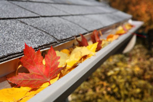 gutter cleaning northern virginia